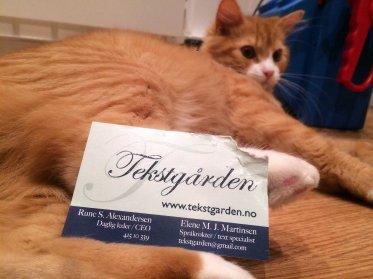Middels interessert. – Gi meg heller en kortstokk jeg kan trylle med, sier Weasley. Foto: Rune S. Alexandersen/Tekstgården (c)