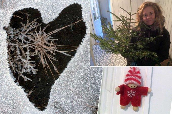 Jakten på julestemninga