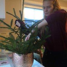 VIPS: ... så har vi en julebusk i potte. Nå mangler bare litt julepynt! Foto: Rune S. Alexandersen